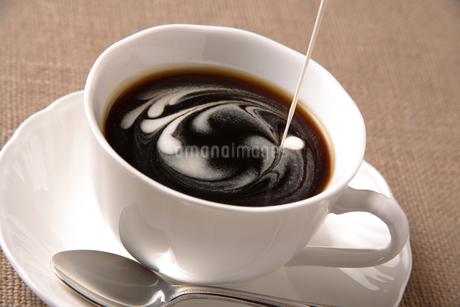 コーヒーの写真素材 [FYI02959936]