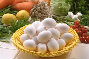 卵の写真素材 [FYI02959978]