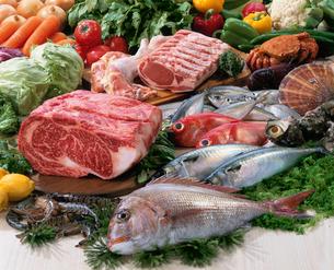 肉と魚介の写真素材 [FYI02960232]