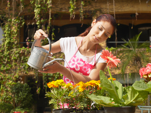 Young woman watering plantsの写真素材 [FYI02960270]