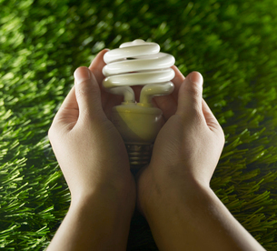 Person Holding Energy Saving Lightbulbの写真素材 [FYI02960853]