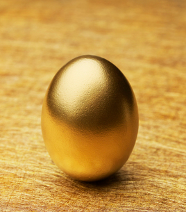 Single Golden Eggの写真素材 [FYI02961170]