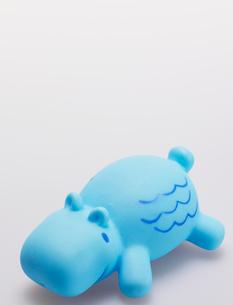 Single Toy Hippoの写真素材 [FYI02961233]