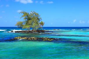 ハワイ島ヒロのカールスミスビーチパークの写真素材 [FYI02961394]