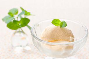 オーデコロンミントを乗せたアイスクリームの写真素材 [FYI02961822]