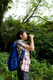 双眼鏡で森の中を見ている男の子の写真素材 [FYI02963594]