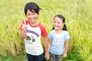 田んぼに立つ子供の写真素材 [FYI02963784]