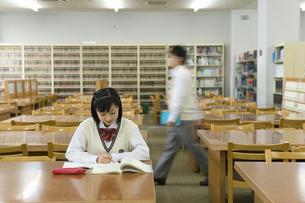 図書室で勉強をする女子高生の写真素材 [FYI02964151]