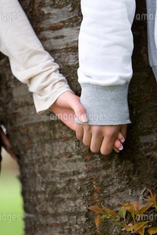桜の木とカップルの写真素材 [FYI02965623]