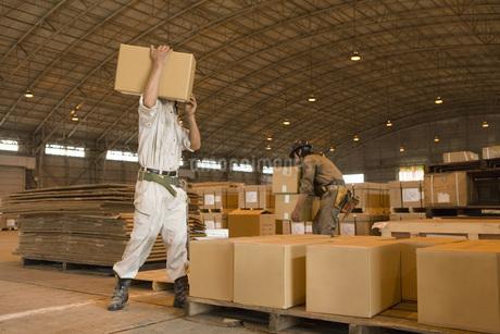 ダンボールを運ぶ男性作業員の写真素材 [FYI02965735]