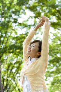 木の下で伸びをする女性の写真素材 [FYI02966209]
