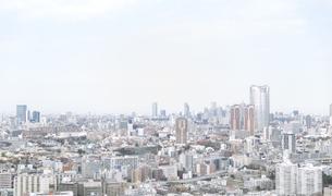 六本木、新宿方面 港区芝からの眺めの写真素材 [FYI02966321]
