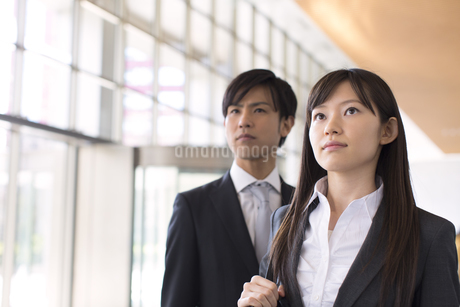 並んで上を見るビジネス男女の写真素材 [FYI02966441]