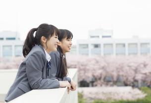 屋上から遠くを眺める2人の女子高校生の写真素材 [FYI02966684]