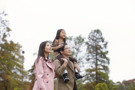 木をバックに肩車して遠くを見る家族の写真素材 [FYI02966693]