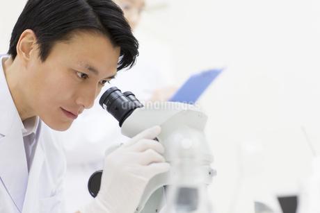 顕微鏡を覗く男性研究員の写真素材 [FYI02966841]
