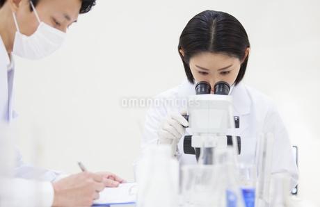 顕微鏡を覗く女性研究員の写真素材 [FYI02966869]