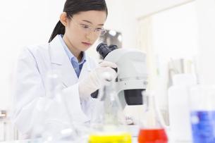 顕微鏡の調節をしている女性研究員の写真素材 [FYI02967024]