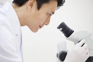 顕微鏡を覗く男性研究員の横顔の写真素材 [FYI02967049]