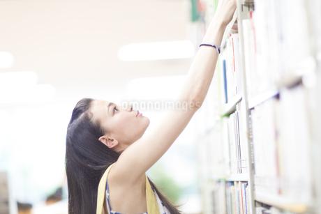 図書室で本を探す女子学生の写真素材 [FYI02967135]