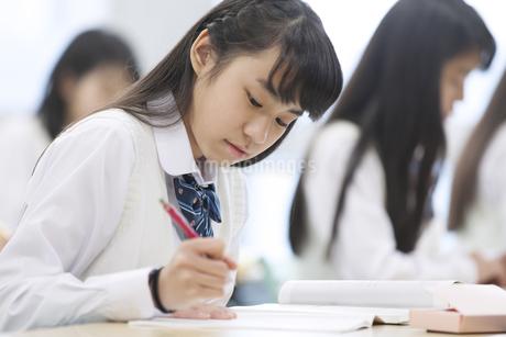 授業を受ける女子高校生たちの写真素材 [FYI02967239]