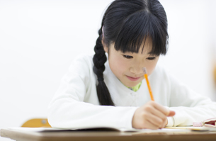 勉強をする女の子の写真素材 [FYI02967274]