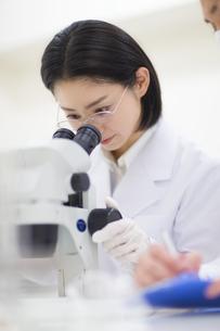 顕微鏡を覗く女性研究員の写真素材 [FYI02967397]