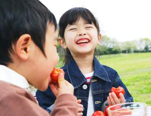 草原でピクニックを楽しむ子供の写真素材 [FYI02967486]