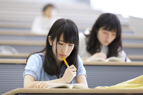 講義を受ける女子学生の写真素材 [FYI02967537]