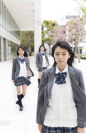 女子高校生のポートレートの写真素材 [FYI02967566]