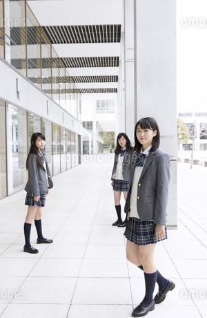 女子高校生たちのポートレートの写真素材 [FYI02967635]