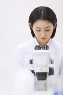 顕微鏡を覗く女性研究員の写真素材 [FYI02967676]