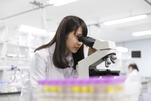 顕微鏡を覗く女子学生の写真素材 [FYI02967697]