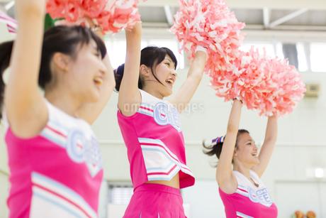 体育館で応援するチアリーダーの写真素材 [FYI02967708]