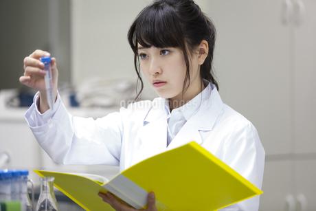 研究をしている女子学生の写真素材 [FYI02967743]