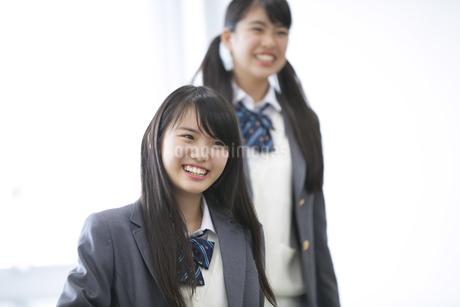 教室で笑う2人の女子高校生の写真素材 [FYI02967934]
