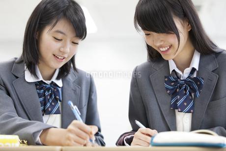 教科書を見ながら勉強をする2人の女子高校生の写真素材 [FYI02968125]