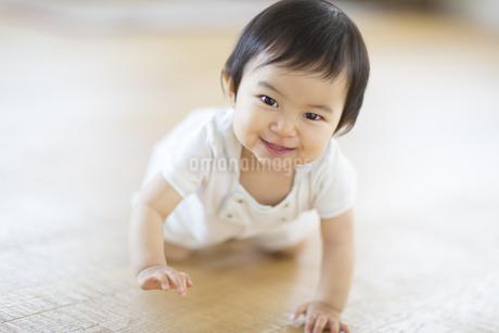 はいはいをして微笑む赤ちゃんの写真素材 [FYI02968134]