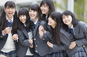 笑う女子高校生たちのポートレートの写真素材 [FYI02968169]