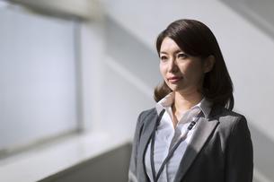 ビジネス女性のポートレートの写真素材 [FYI02968308]