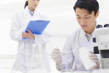 薬さじを使って研究をしている男性研究員の写真素材 [FYI02968324]