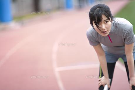 陸上競技場で休憩している女子学生の写真素材 [FYI02968532]