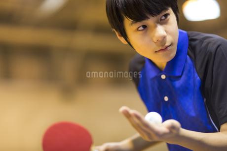 卓球をする男子学生の写真素材 [FYI02968603]