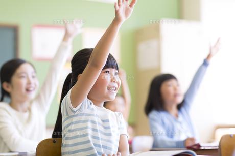 授業中に手を上げる小学生たちの写真素材 [FYI02968636]