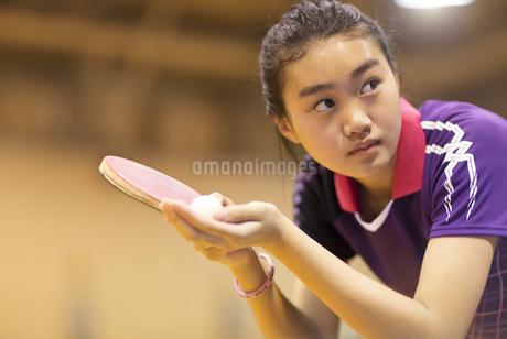 卓球をする女子学生の写真素材 [FYI02968729]