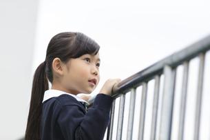 屋上から遠くを眺める小学生の女の子の写真素材 [FYI02968828]