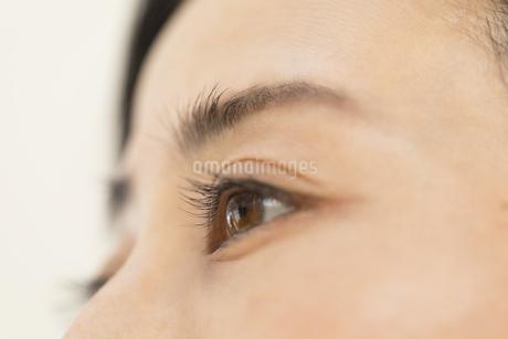 女性の目元の写真素材 [FYI02968859]