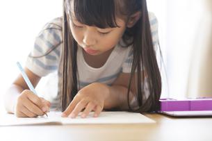 勉強をする女の子の写真素材 [FYI02968959]