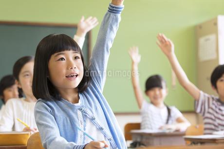 授業中に手を上げる小学生たちの写真素材 [FYI02969197]
