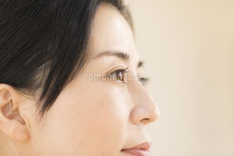 女性の横顔の写真素材 [FYI02969259]